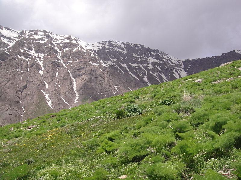 کوه های شمال استان البرز و طالقان کرج